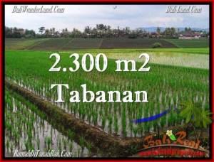 Magnificent 2,400 m2 LAND SALE IN TABANAN BALI TJTB263