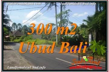 Beautiful PROPERTY UBUD LAND FOR SALE TJUB646