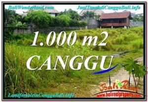 LAND SALE IN Canggu Pererenan TJCG214