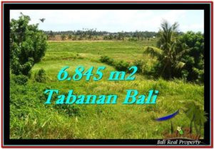 Affordable TABANAN BALI 6,845 m2 LAND FOR SALE TJTB245
