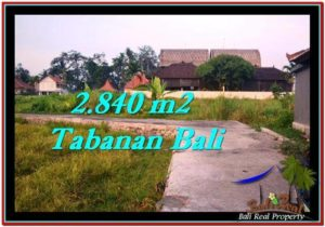 Beautiful 2,840 m2 LAND FOR SALE IN Tabanan Tanah Lot TJTB247