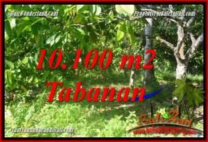 Beautiful 10,100 m2 LAND SALE IN Tabanan Selemadeg Barat TJTB360