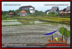 Exotic PROPERTY 600 m2 LAND FOR SALE IN CANGGU BALI TJCG220