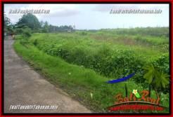 Exotic LAND SALE IN Tabanan Selemadeg TJTB354