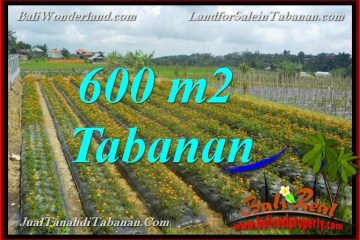 Beautiful PROPERTY LAND FOR SALE IN TABANAN Bedugul BALI TJTB372