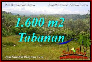 Exotic PROPERTY 1,600 m2 LAND SALE IN Tabanan Selemadeg TJTB378