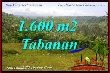Exotic PROPERTY 1,600 m2 LAND SALE IN Tabanan Selemadeg TJTB378