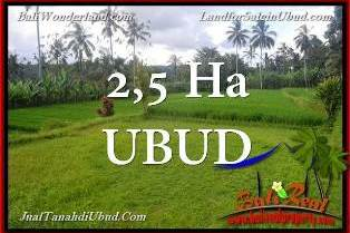 FOR SALE Beautiful PROPERTY LAND IN UBUD TJUB655