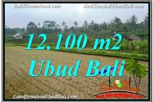 Magnificent PROPERTY 12,100 m2 LAND SALE IN UBUD PAYANGAN BALI TJUB677