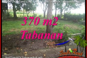 Magnificent PROPERTY LAND IN TABANAN BALI FOR SALE TJTB383