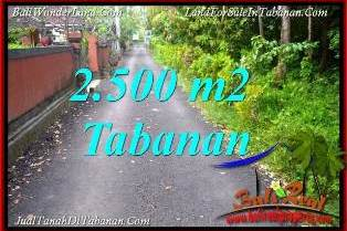 Affordable 2,500 m2 LAND SALE IN TABANAN SELEMADEG BALI TJTB391