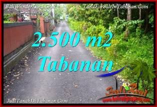 Affordable 2,500 m2 LAND SALE IN TABANAN SELEMADEG BALI TJTB391