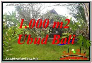 Exotic 1,000 m2 LAND FOR SALE IN SENTRAL UBUD BALI TJUB680