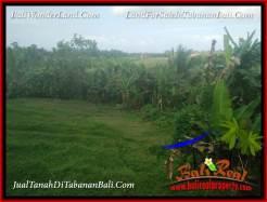 Beautiful 4,800 m2 LAND SALE IN TABANAN SELEMADEG TJTB387