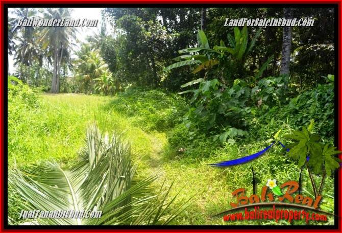 Magnificent Property Land for sale in Ubud Bali TJUB685