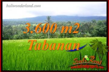 Exotic Property Tabanan Penebel 3,600 m2 Land for sale TJTB415
