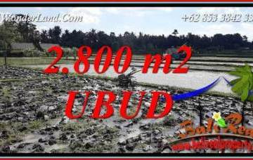Beautiful Property 2,800 m2 Land sale in Sentral Ubud TJUB722