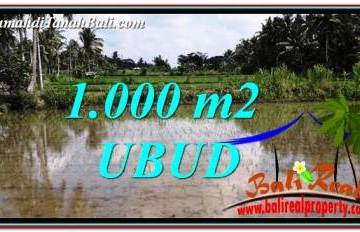 Exotic UBUD BALI 1,000 m2 LAND FOR SALE TJUB753