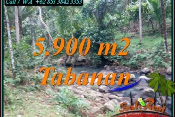 Magnificent PROPERTY 5,900 m2 LAND FOR SALE IN TABANAN TJTB458