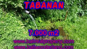 Land for sale in Tabanan Bali, Unbelievable view in Tabanan Penebel – TJTB089