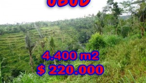 Exceptional Property in Bali, Land for sale in Ubud Bali – TJUB251