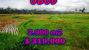 Spectacular Property for sale in Bali, land for sale in Ubud Bali – 2.900 sqm @ $ 110