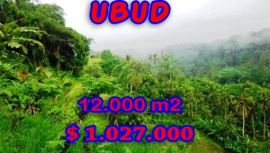 Property in Bali for sale, Spectacular land for sale in Ubud Bali  – 12.000 sqm @ $ 86