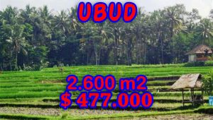 Land for sale in Bali, Exotic view in Ubud Bali – TJUB266