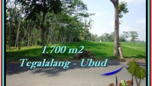Exotic PROPERTY LAND IN UBUD FOR SALE TJUB518