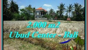 Beautiful 2,000 m2 LAND SALE IN UBUD BALI TJUB524