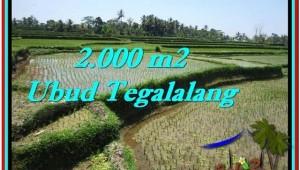 Ubud Tegalalang BALI LAND FOR SALE TJUB529