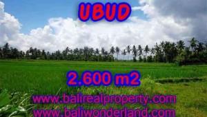 Land for sale in Bali, astonishing view in Ubud Center Bali – TJUB374