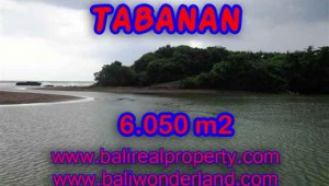 Exotic LAND FOR SALE IN TABANAN Bali, rice fields, beach, and river view in Tabanan Selemadeg– TJTB098