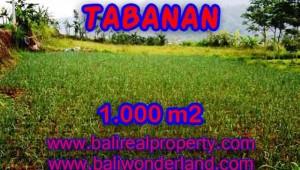 Land in Tabanan Bali for sale, Outstanding view in Tabanan Bedugul – TJTB101