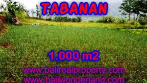 Land in Tabanan Bali for sale, Outstanding view in Tabanan Bedugul – TJTB101