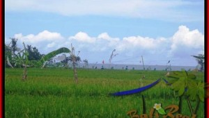 Beautiful PROPERTY LAND FOR SALE IN Canggu Cemagi BALI TJCG140
