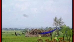 Exotic PROPERTY 1.650 m2 LAND IN CANGGU FOR SALE TJCG158
