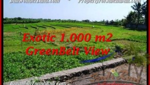 Beautiful LAND SALE IN Canggu Pererenan TJCG184