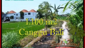 FOR SALE Magnificent PROPERTY 1,100 m2 LAND IN CANGGU TJCG193