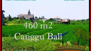 LAND FOR SALE IN Canggu Brawa TJCG195