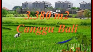 Magnificent PROPERTY 3,380 m2 LAND SALE IN CANGGU BALI TJCG199
