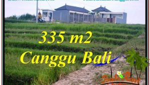 Affordable LAND SALE IN Canggu Umalas TJCG204