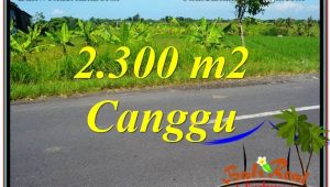Beautiful LAND IN Canggu Echo Beach BALI FOR SALE TJCG209