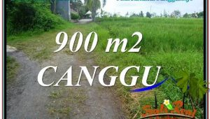 LAND FOR SALE IN Canggu Batu Bolong  TJCG215
