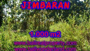 Affordable PROPERTY 1,000 m2 LAND SALE IN Jimbaran Ungasan BALI TJJI071