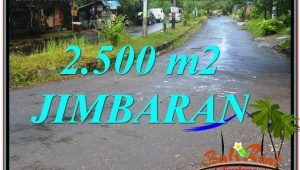 FOR SALE Beautiful 2,500 m2 LAND IN Jimbaran Ungasan TJJI118