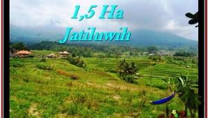 Beautiful PROPERTY 15,000 m2 LAND IN Tabanan Penebel FOR SALE TJTB225