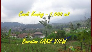Exotic PROPERTY TABANAN BALI 1.000 m2 LAND FOR SALE TJTB180
