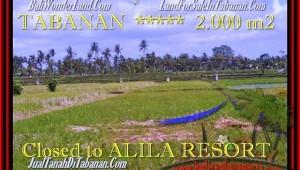 Affordable PROPERTY LAND SALE IN Tabanan yeh Gangga BALI TJTB187