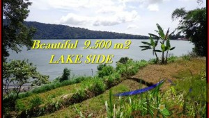 Beautiful PROPERTY 9,500 m2 LAND FOR SALE IN Tabanan Bedugul TJTB192